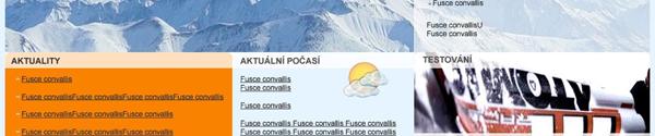 Joomla template Ski park
